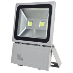 100W (750W Equiv) Twin LED Floodlight  - Daylight White