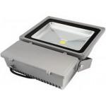 100W (1000W Equiv) LED Floodlight  - Daylight White
