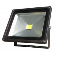 30W (300W Equiv) Premium LED Black Case Floodlight  - Daylight